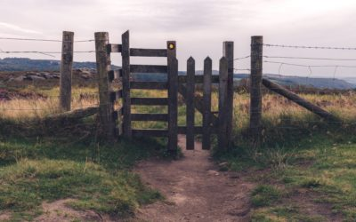 Sabbath Fences, Sabbath Gates